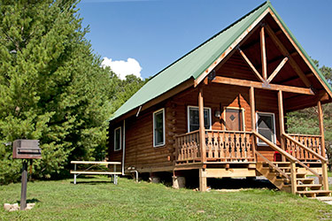 Luxury Log Cabins w/ satellite TV
