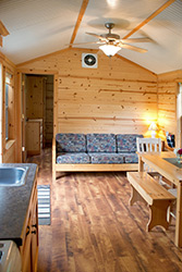 Luxury Family Lodge w/ satellite TV Interior
